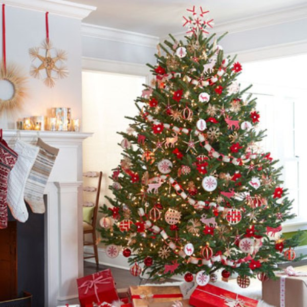 reuse live christmas tree rental - Rent A Decorated Christmas Tree